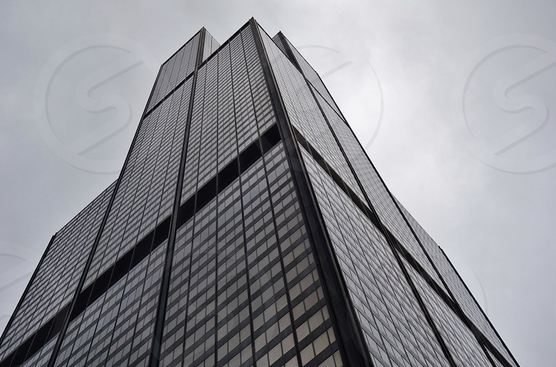 The Willis Tower in Chicago formerly Sears Tower photo