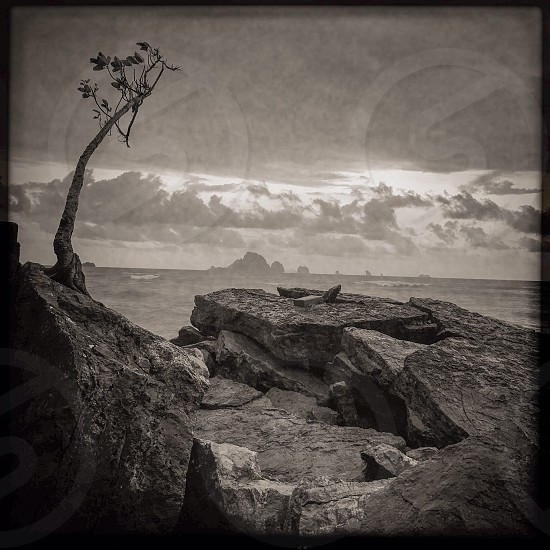 Outdoor day black and white Monochrome square filter Krabi Ao Nang Thailand Thai Kingdom Beach sea ocean shore waves Asia Asian view vista sky clouds summer rocks rocky travel tourism wanderlust tourist water splash spray wet limestone cliffs tree Nature foliage crack crevices rugged bay cloudy atmospheric stormy photo