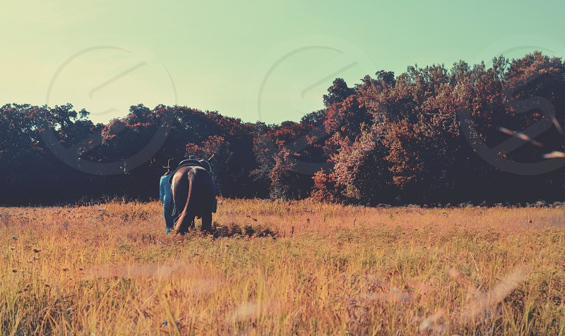 Cowgirl and horse walking through fall pasture on rural ranch. photo