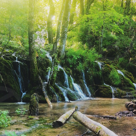 water fall from forest photo