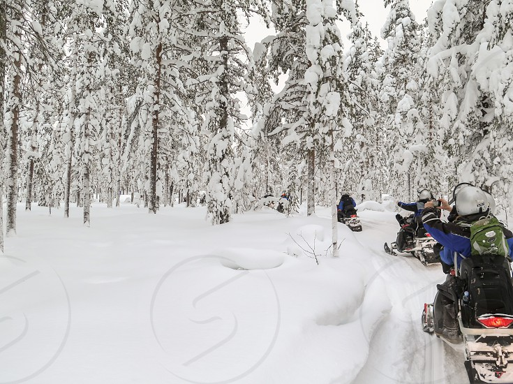 Snowmobiling in a winter wonderland.  Finland.  Riders taking pictures. photo