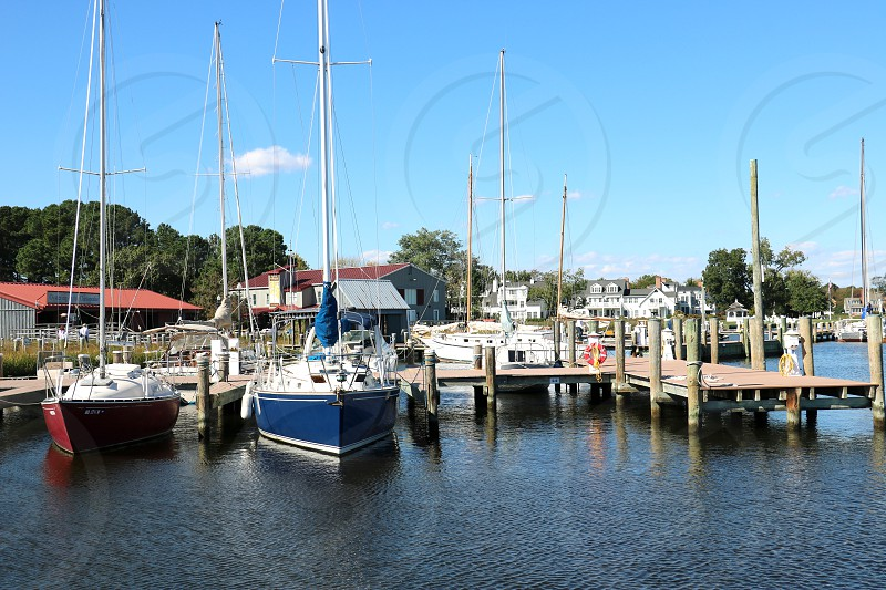 Fishing boats are docked in a harbor photo