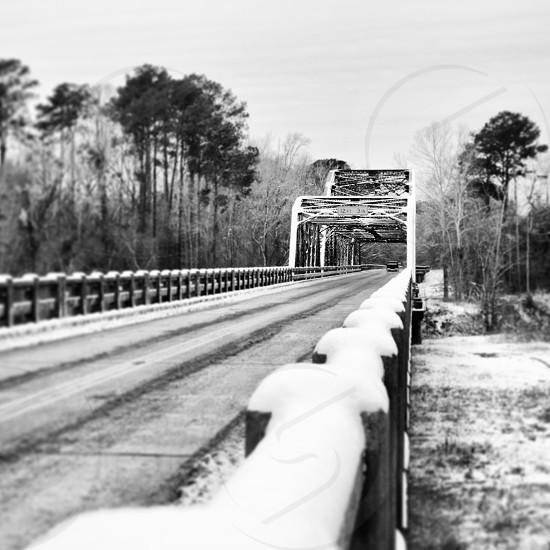 Winter day in Louisiana photo