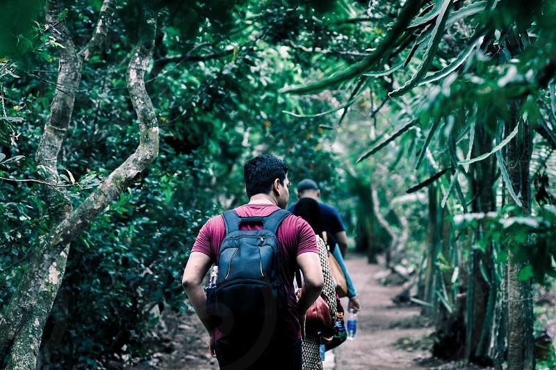 Trail hiking in Vietnam photo