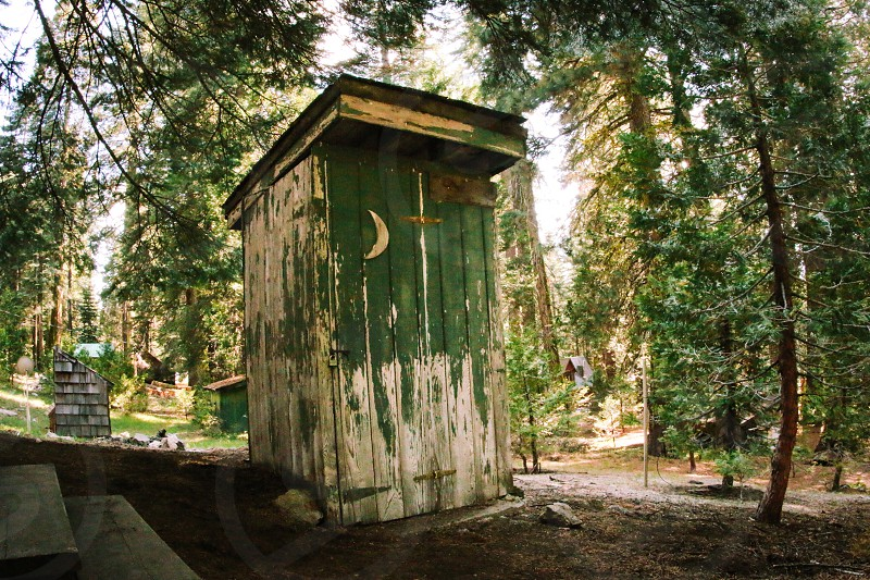 peeling green paint wood outhouse under trees photo