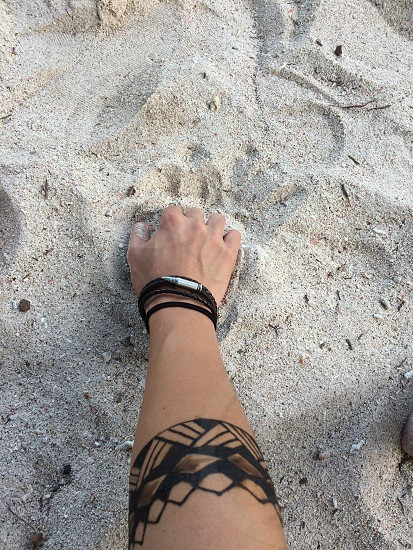 person wearing black wristbands holding white sand photo
