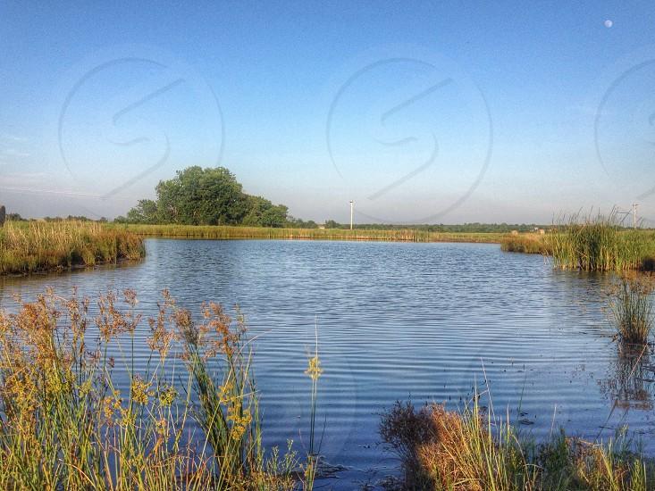 ponds view photo