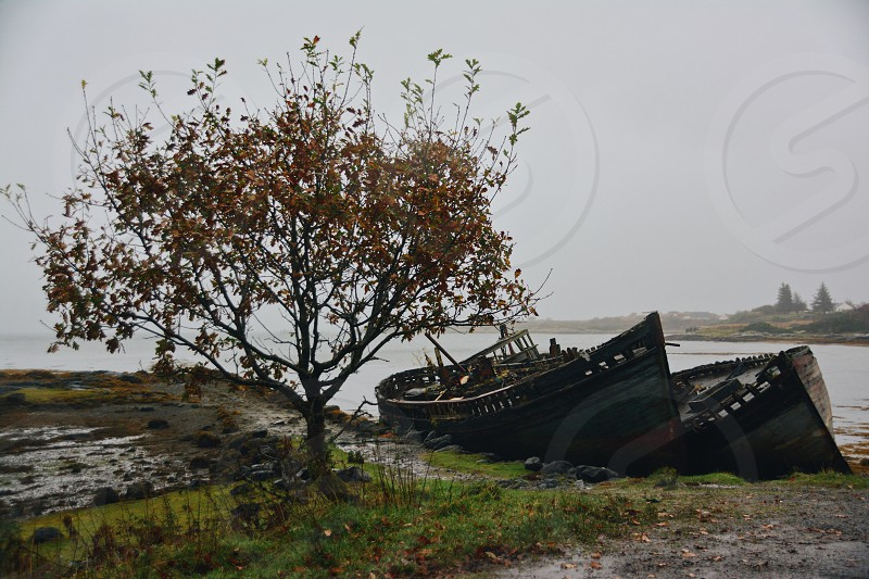 Scotland autumn photo