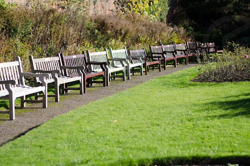 Benches in park quiet peaceful sunshine photo