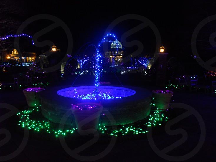 Christmas Lights Fountain photo