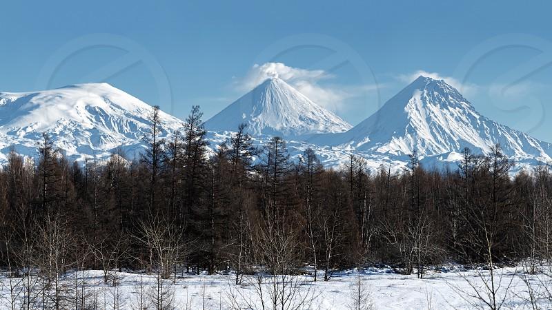 Scenery panorama winter mountain landscape of Kamchatka Peninsula: eruption active Klyuchevskaya Sopka (Klyuchevskoy Volcano) and other snowy rocky volcanoes of Klyuchevskaya Group of Volcanoes photo