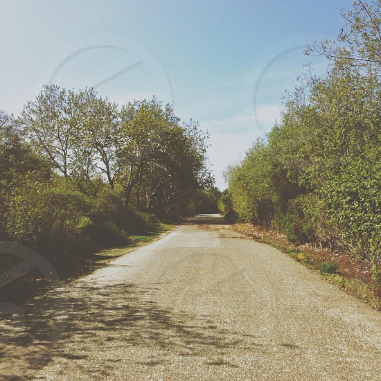 empty gray road photo