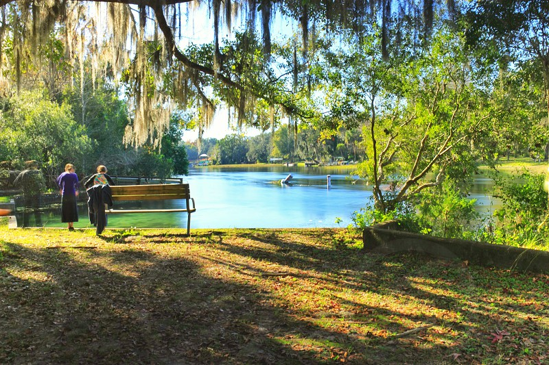 The calm banks of the Rainbow River Florida. photo