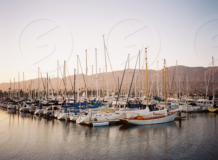 sailboats on water in dock under clear blue sky during daytime photo