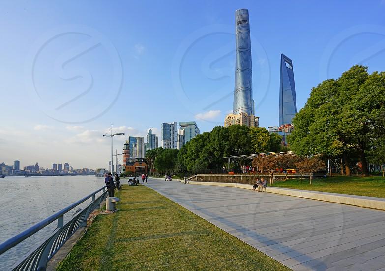 The Shanghai Tower in Shanghai China photo