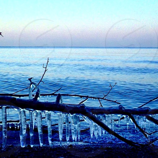 Ice Cold Frozen photo
