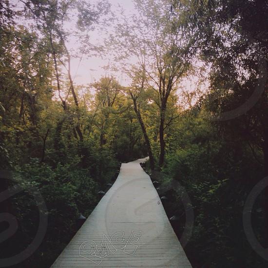 white walkway photo