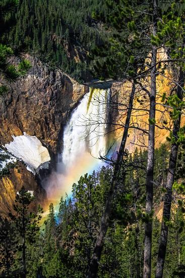 Grand Canyon of Yellowstone photo