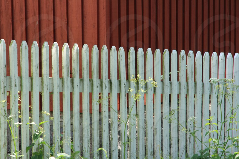 Picket Fence in White on Red photo