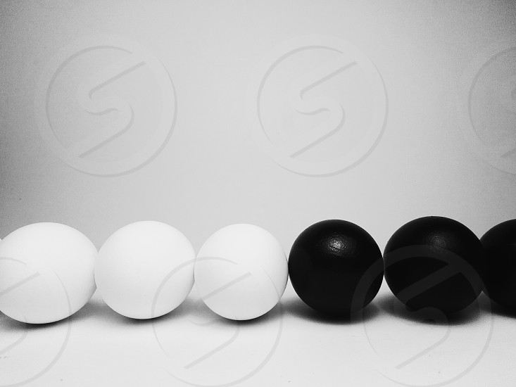 simplicity diversity black and white eggs in a row photo