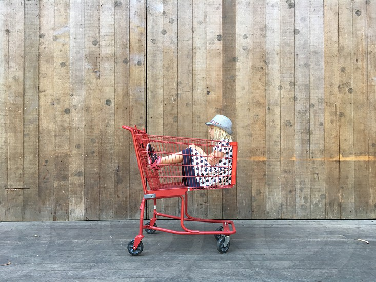 Child in a shopping cart back to school shopping adoption  photo