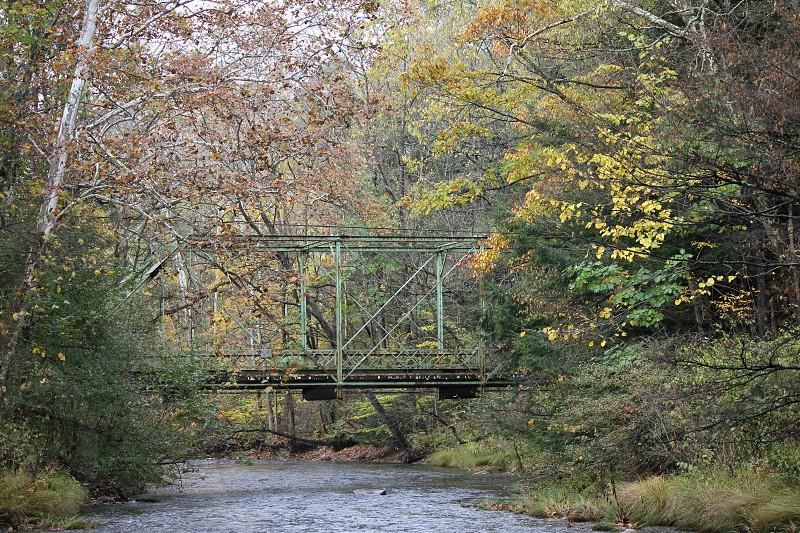 Fall Bridge Scene photo
