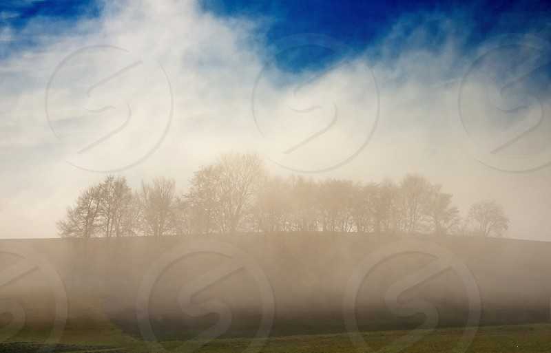 high fog in autumn photo