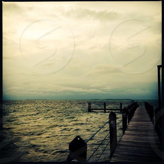 The gulf coast photo