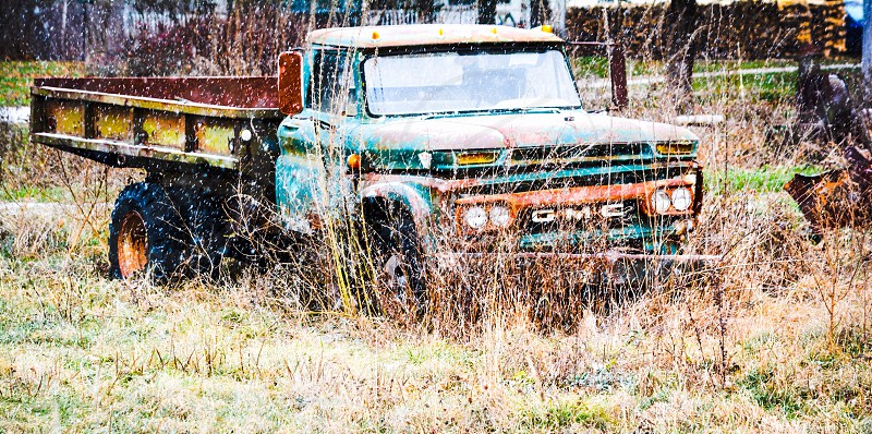 green and brown GMC single cab pickup truck on green grass photo
