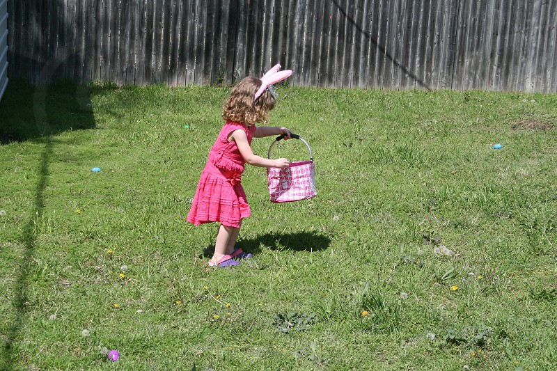Young girl in pink dress gathering Easter eggs in grassy back yard while wearing fuzzy pink bunny ears photo