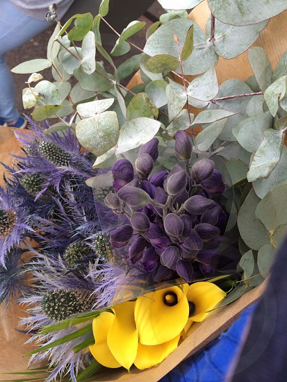 Flowers purple yellow thistles green Columbia road market bunch buds petals pretty summer photo