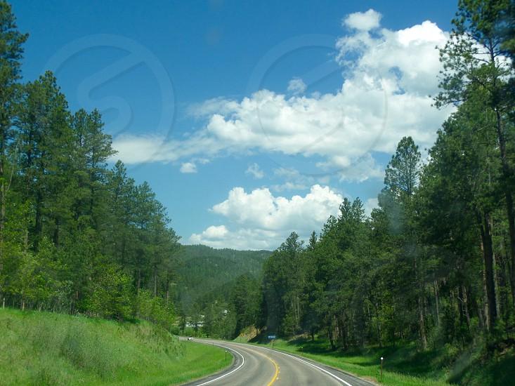 Beautiful nature South Dakota Black Hills Summer vacation Family road trip photo