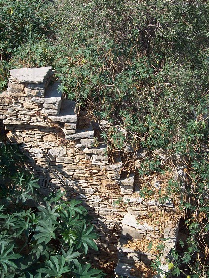 Stairway to heaven! - Stairway to nowhere! - stone work  - architecture - garden of eden - overgrown - ruin - stairs - back to nature! - overtaken - taken on too much - no where to begin - don't know where to start - crumbling - Greek - Greece photo