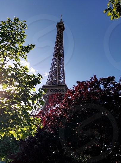 Tour Eiffel au printemps Eiffel tower in spring photo