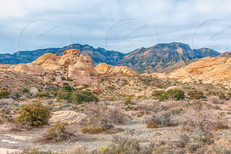 Red Rock Canyon National Conservation Area in winter. Nevada. USA photo