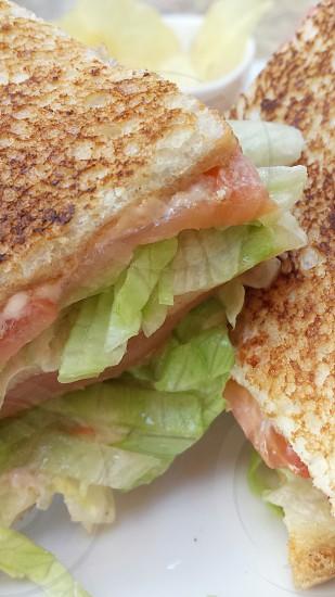 salmon club sandwich photo