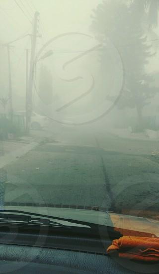 morning winter fog photo