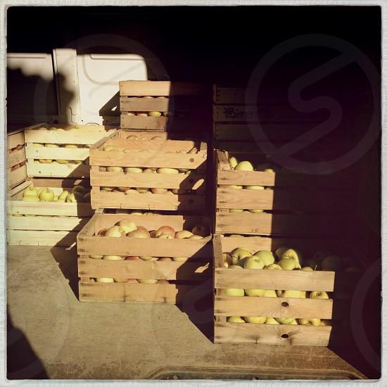 brown wooden fruit case photo