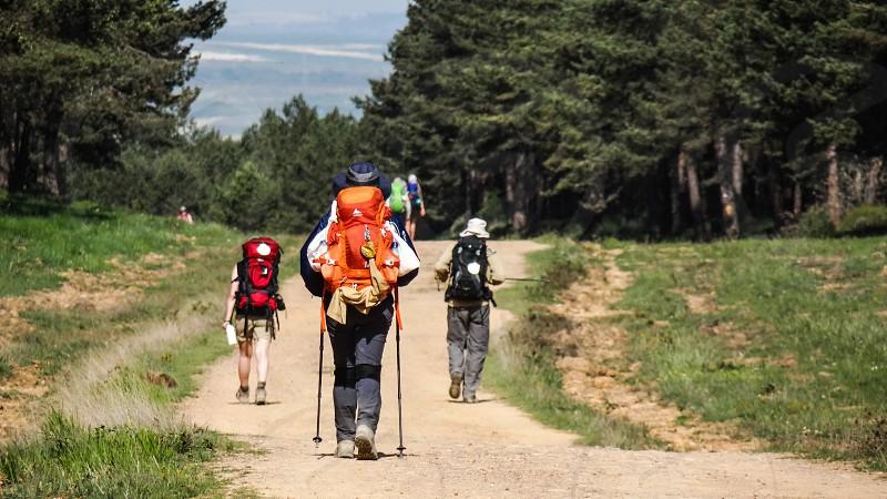 Caminho de Santiago French Camino Spain photo