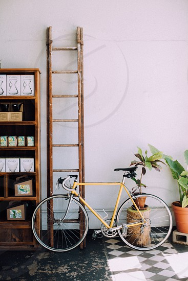 yellow road bike beside plants in pot cabinet and ladder photo