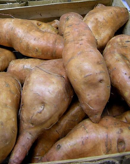 Sweet potatoes in box photo