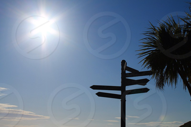 Multidirectional signpost. Which way? photo