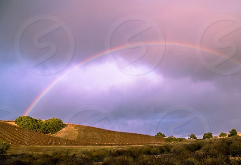 Rainbow over vineyards in Paso Robles CA photo