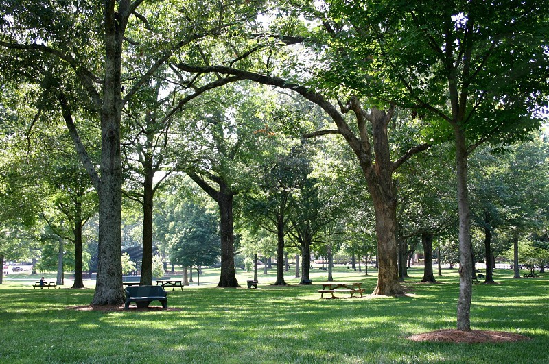 The Grove at the University of Mississippi in Oxford Mississippi photo