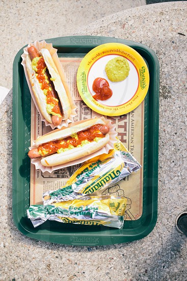 hotdog on buns on top of a green plastic tray photo