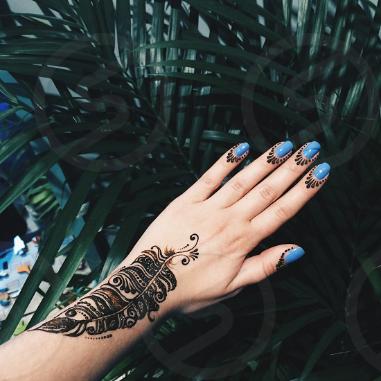 black feather arm tattoo with black ornamental tattoo beside blue fingernails with green leaf plant on the background photo