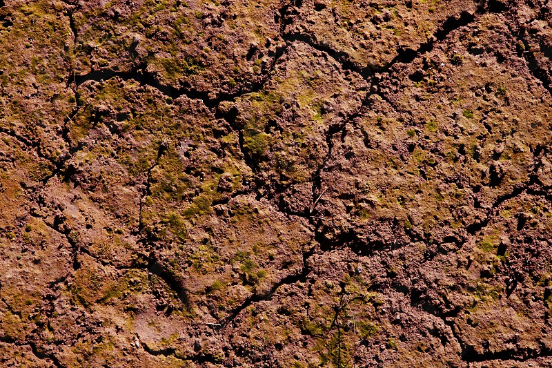 Dried cracked red clay natural soil in orange brown color photo