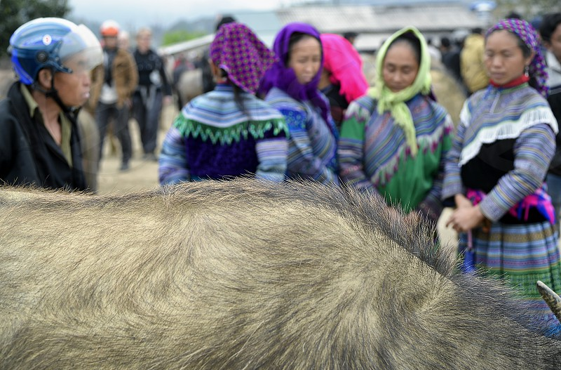 A group of ethnic women at the highland market in the Northwest Vietnam photo