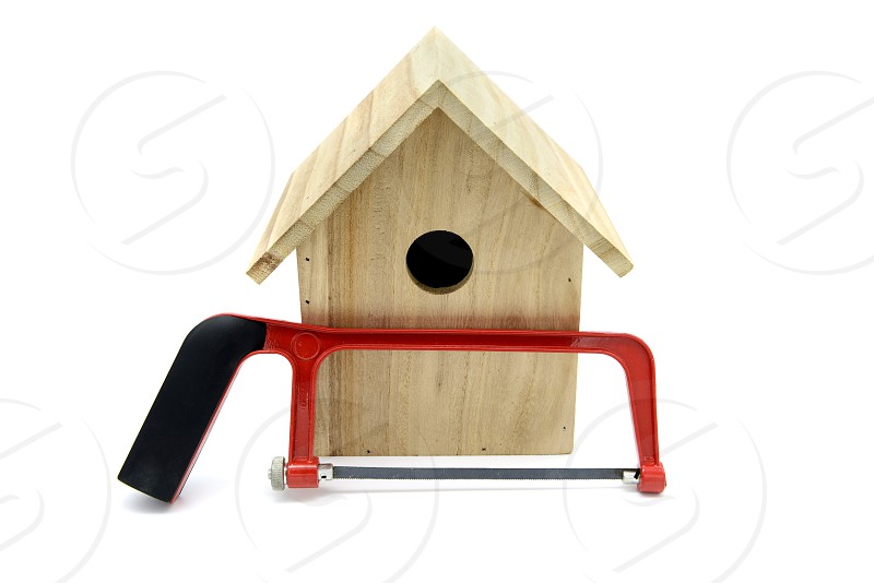 building bird nesting box with nails and saw. bird looking out of nestbox. white isolated background photo
