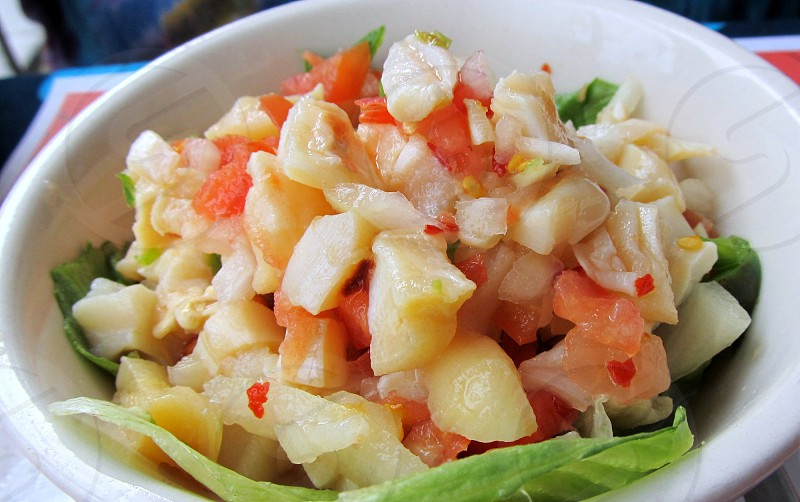 Conch salad on lettuce leaf in white bowl photo